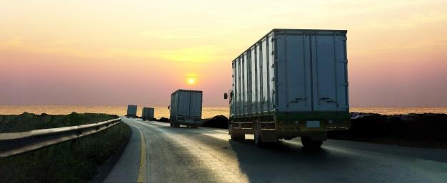 Gestión transporte y/o documentación*
